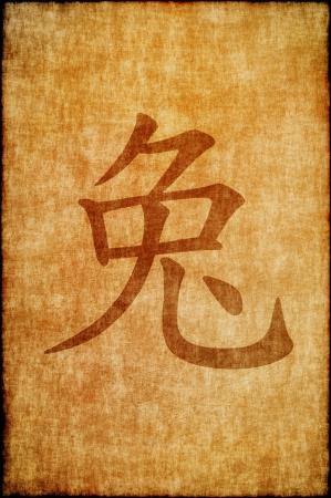 chinese new year rabbit: Chinese zodiac sign rabbit Stock Photo