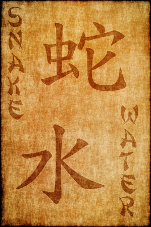 snake calligraphy: Chinese zodiac sign snake and water Stock Photo