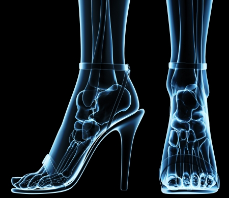 bones of the foot: women
