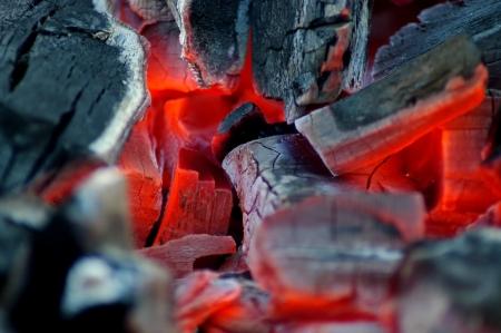 embers: Burning fire wood. Hot embers