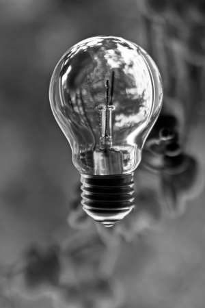 glass bulb on blur background Stock Photo - 17178489
