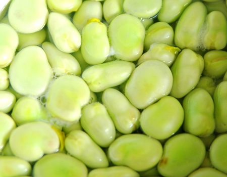 green been: broad beans in boiling water