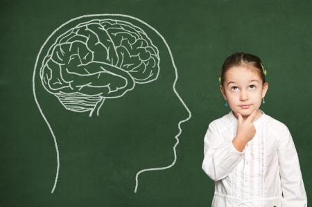 brain and thinking: Brain in head on green  chalkboard
