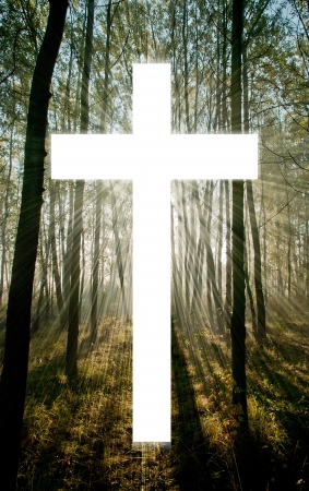 shafts: Cross with light shafts  Faith symbol