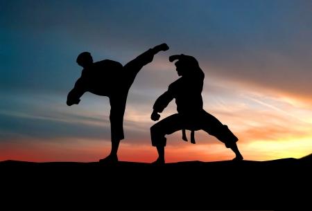 プレーヤーは空に戦います。