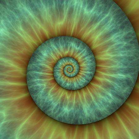 Abstracte spiraal patroon. fibonacci patroon