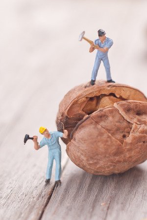 man nuts: Small people split the walnut. The concept of cooking.