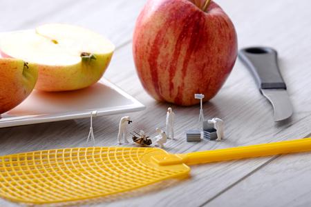 miniature: Miniature figurines. Group investigators study a dead fly.