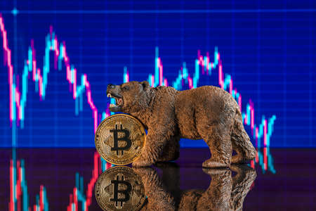 Investing in cryptocurrencies. The bearish trend for bitcoin
