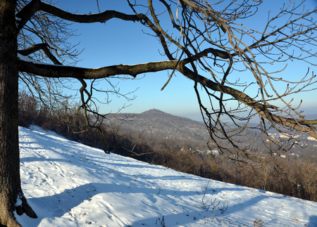 View from the top of Norma Wood in winter (Budapest, Hungary)