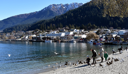 wakatipu: Queenstown, New Zealand - Aug 27, 2016 People feeding seagulls at Lake Wakatipu.
