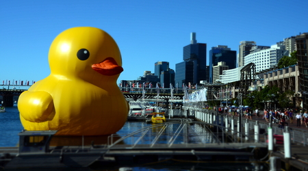 Sydney, Australia - Jan 5, 2013 Giant rubber duck floats in Darling Harbour. Dutch artist Florentijin Hofmans sculptures in unexpected places gives a new perspective on public spaces. Editorial