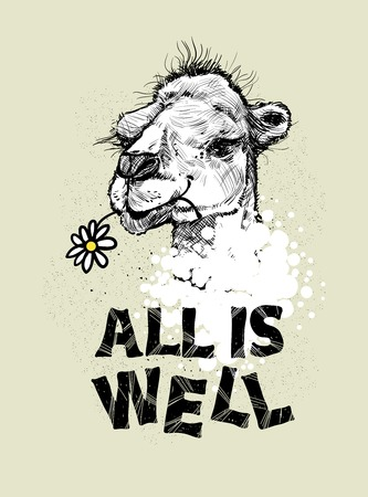 well head: Drawing the head of a camel and the letter.All is well, vector illustration. Print for textiles, motivation