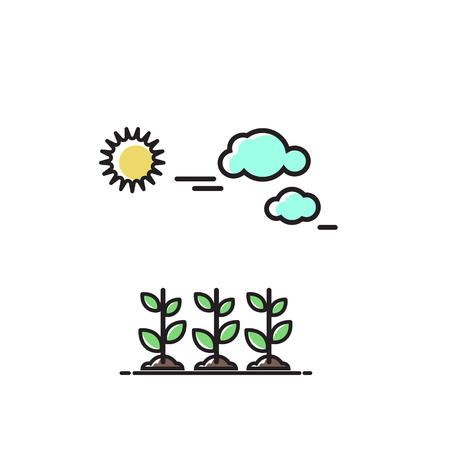 Sprouts under the sun. Vector icon, illustration in flat style.