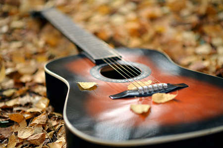 spanish guitar: Acoustic guitar in autumn park on leaves