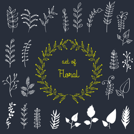 jungle plants: Vector, hand drawn herbals, leaf. wreath trendy design