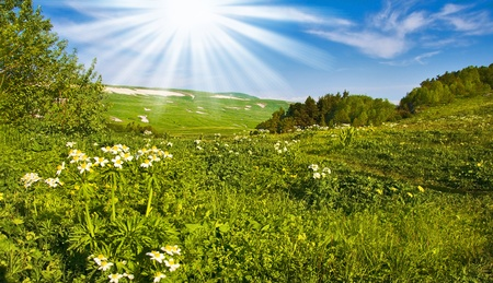 springtime or summertime  in the alps with mountains and flowers. Beautiful landscape Stock Photo - 10017521