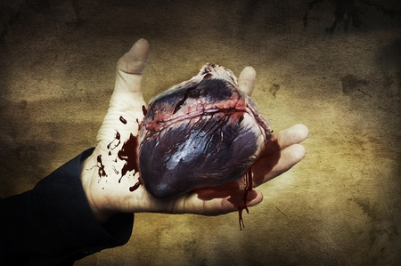 demoniacal: Halloween concept. raw heart of pig in hand with blood. Retro style image of vampire heart Stock Photo