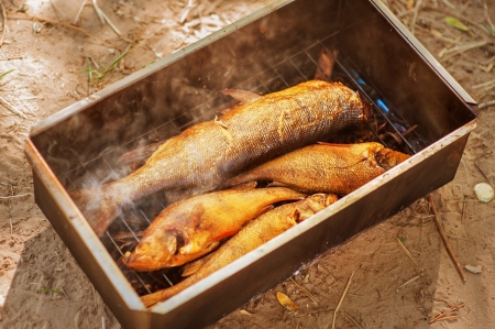 river fish: beautiful freshly cooked Smoked river fish in smokehouse outdoor