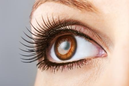 vrouw bruin oog met valse extreem lange wimpers
