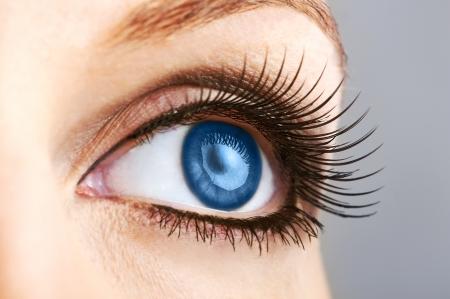globo ocular: mujer morena con ojos azules muy largas pesta�as falsas Foto de archivo