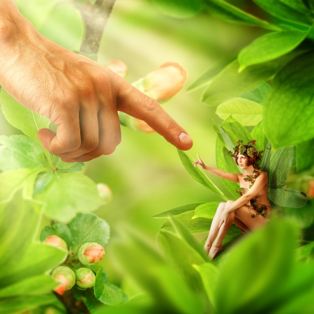 Human hand touching his finger to finger of garden fairy sitting on a green plant photo