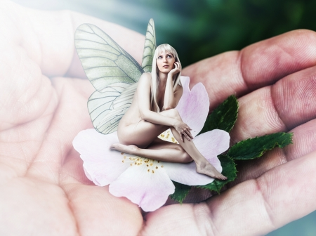 Beautiful sexy woman pixie with butterfly wings sitting on a tender pink flower in male hand Stock Photo - 20620342