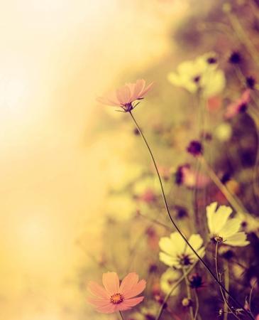 Beautiful defocus blur retro background with tender flowers. Floral art design in retro style 写真素材