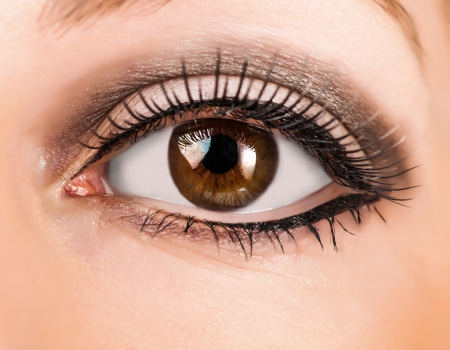 woman brown eye with false  extremely long lashes  Stock Photo