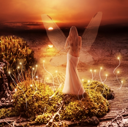 Fantasy magic world. Fairy with transparent wings standing on green island in  lake and watching the sunset photo