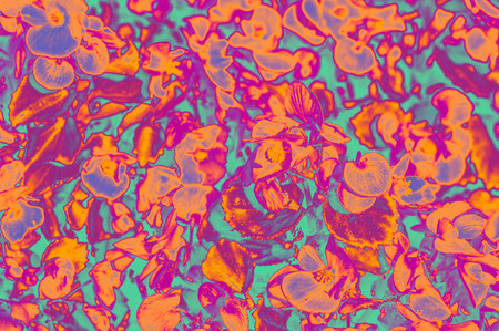 Abstract floral background with unreal color filters
