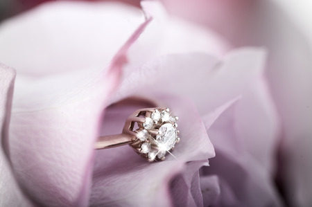 gold engagement ring with diamonds in beautiful rose flower, macro view and copy space photo