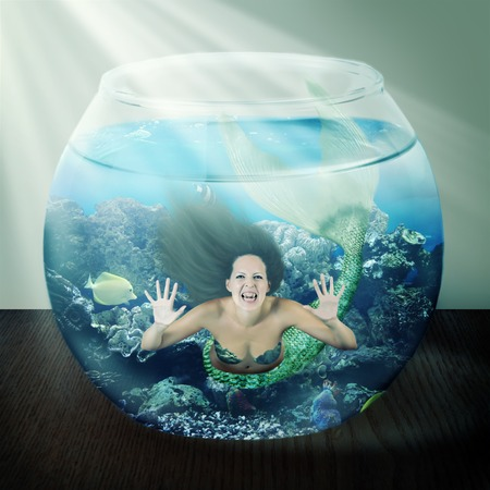 evil mermaid in a fishbowl with fish on table