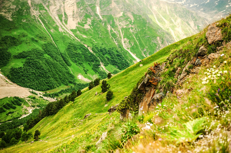 Slope Mountain Cheget and views of beautiful green valley. Caucasus Mountains, Kabardino-Balkaria, Russia