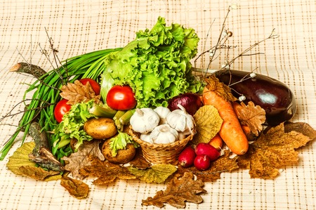 ajo: l�cteos naturales productos rurales conjunto - la cosecha de oto�o de verduras - r�banos, tomates, etc., sobre un mantel