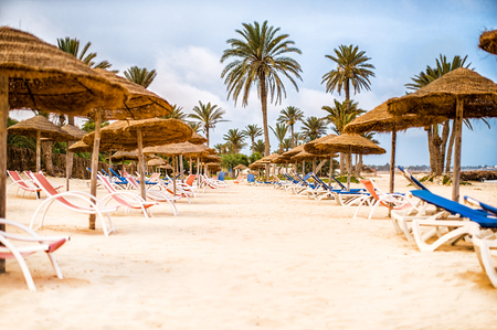 Sunbeds with umbrellas parasols made of straw and palm trees on snow-white sand on the beach in Tunisia