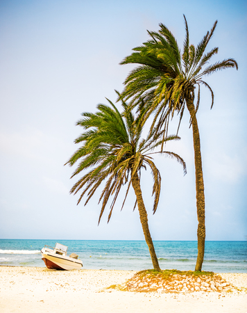 Card from tropical vacations - palm trees on white sand beach and powerboat