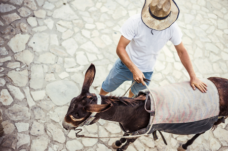 A man is a farmer in a straw hat in a village or small town with his donkey