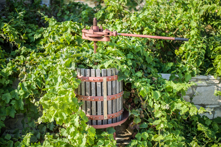 Special tool for the production of wine from grapes in winemaking