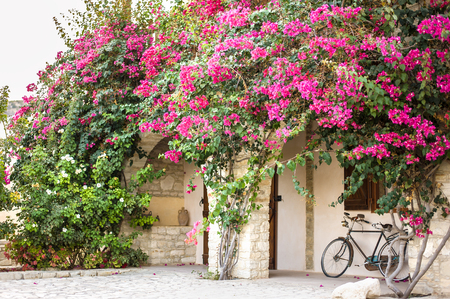 Typical Greek or Cypriot house with curly flowers on the facade