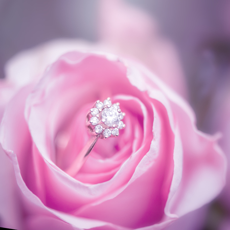 Defocus texture Valentines Day background with diamond engagement ring into a pink rose 版權商用圖片