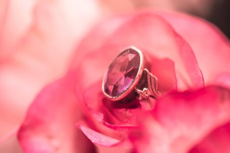 Defocus texture Valentines Day background with pink ruby engagement ring into a pink rose Imagens