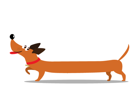 Cute cheerful long cartoon dachshund dog isolated on white background. Vector illustration, clip art.