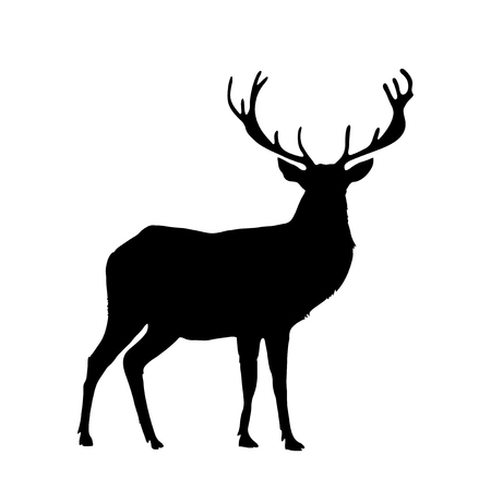 Black silhouette of reindeer with big horns isolated on white background. Vector illustration, icon, clip art, sign, symbol of deer for design.