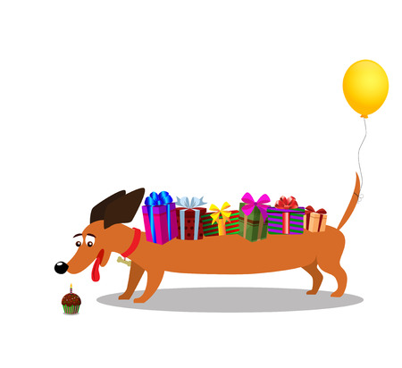 Cute dachshund with gifts on back and baloon on tail watching at  cupcake with burning candle isolated on white background. Vector illustration, clip art, symbol of 2018 new year, birthday card. Ilustracja