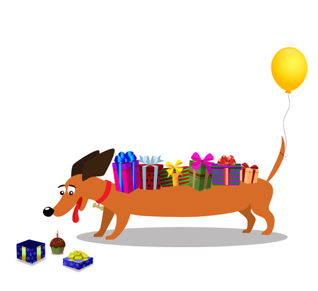 Cute dachshund with gifts on back and baloon on tail watching at gift box with cupcake nearby isolated on white background. Vector illustration, clip art, symbol of 2018 new year, birthday card. Vectores
