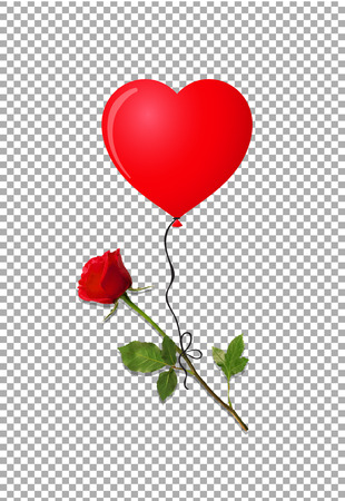Flower of red rose flying on red heart shaped helium balloon isolated on transparent background. Beautiful bud of red rose on long stem. Vector illustration, clip art for love, wedding, dating design.