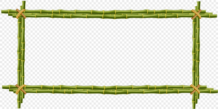 Green bamboo steam frame isolated on transparent background. Vector template for signboard, poster, banner creative design. Realistic plant poles or sticks border with space for text.