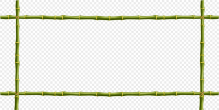 Green bamboo steam frame isolated on transparent background. Vector template for signboard, poster, banner creative desogn. Realistic plant poles or sticks border with space for text.