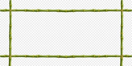 Struttura di bambù verde del vapore isolata su fondo trasparente. Modello di vettore per insegna, poster, banner creativo desogn. Realistici pali o bastoncini di confine con spazio per il testo. Vettoriali